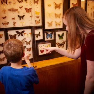 Eugene-Science-Center-Butterfly-Exhibit