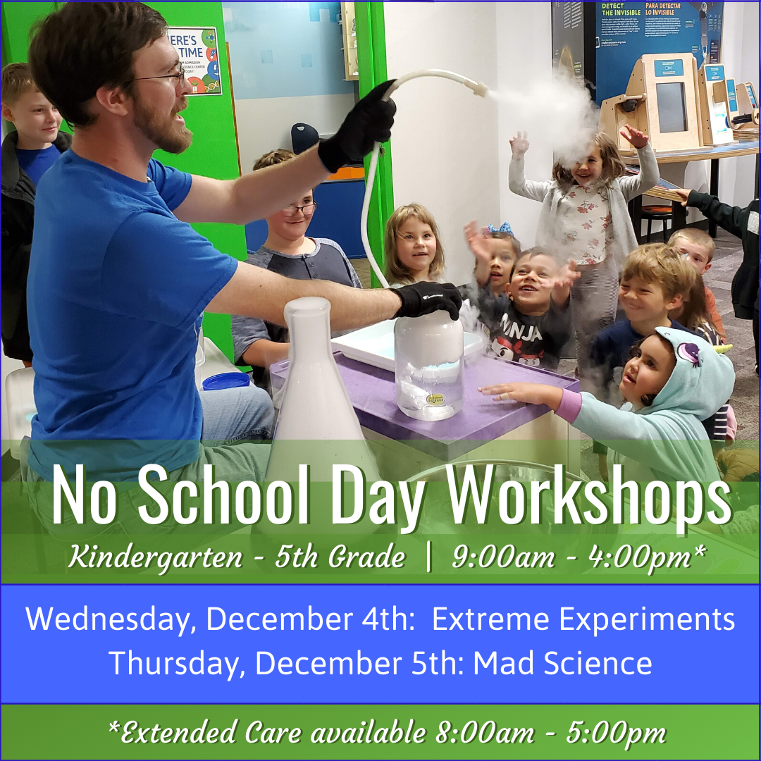 December No School Day Workshops Spr