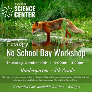 Ecology No School Day Workshop October 2019