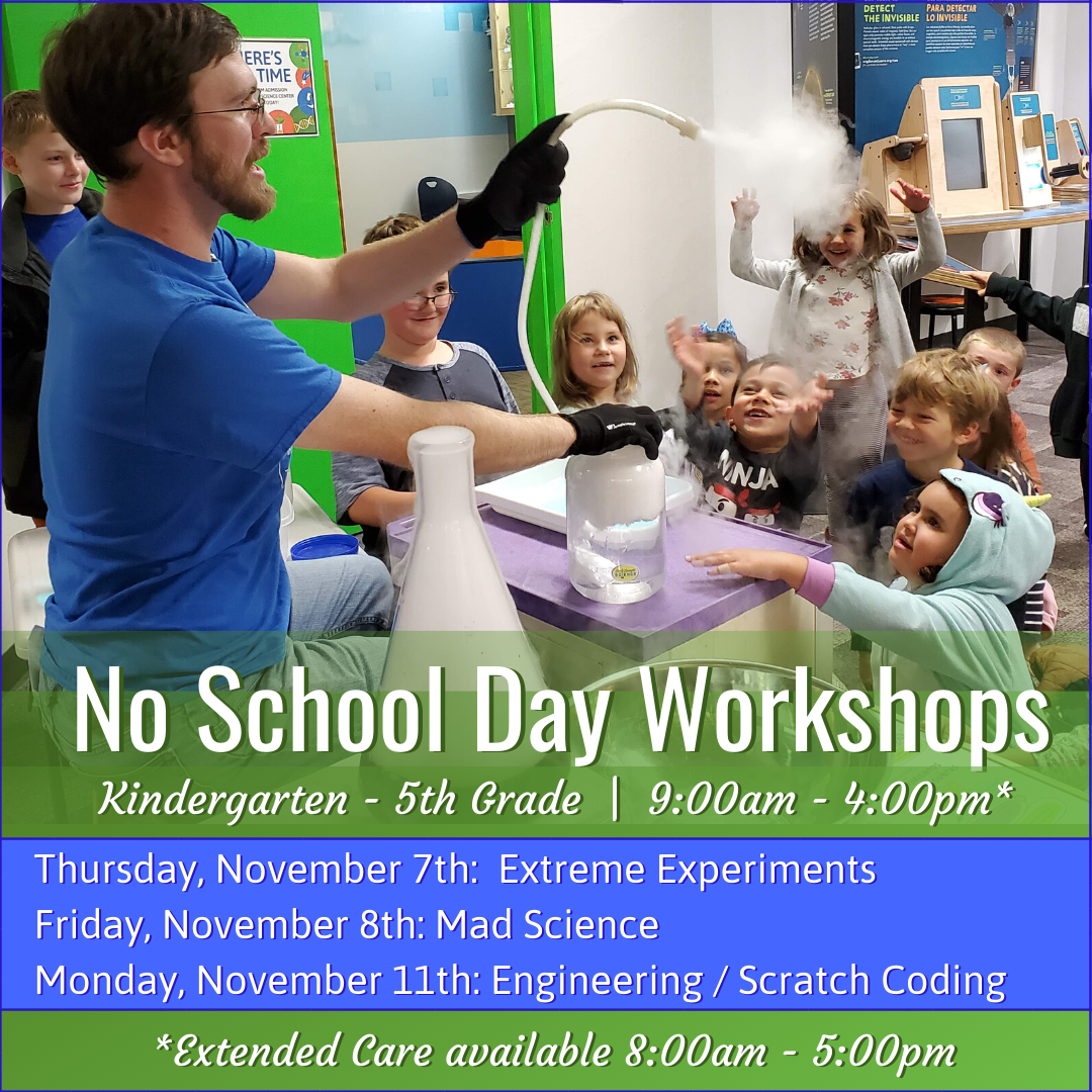 Copy of No School Day Workshop