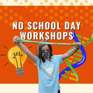 NSD workshops